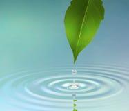 Wasser-Kräuselung lizenzfreie abbildung