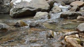 Wasser laufen gelassen durch Flussdurchlauffelsen und -stein im forset stock footage