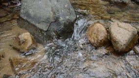 Wasser laufen gelassen durch Flussdurchlauffelsen und -stein im forset stock video