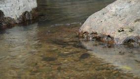 Wasser laufen gelassen durch Flussdurchlauffelsen und -stein im Wald stock footage