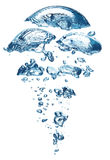 Wasser-Luftblase lizenzfreie stockfotos