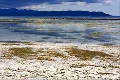 Wasser in Madagaskar Stockfoto