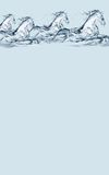 Wasser-Pferden-Vorsatz Stockbild