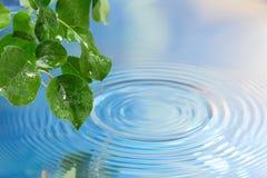 Wasser plätschert Hintergrund Lizenzfreies Stockfoto