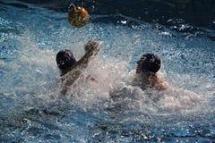 Wasser-Polo Stockfotografie
