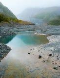 Wasser-Pool im Sommer-Regen im Fox-Gletscher-Tal, Neuseeland Stockfotografie
