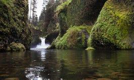Wasser-Punschschale-Fall-Columbia River Schlucht Stockfotografie