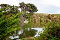 Wasser-Reflexionen auf Australiens Hopkins-Fluss stockfotografie