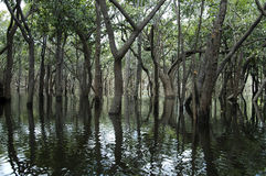 Wasser relections Lizenzfreie Stockfotos