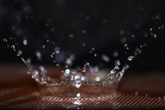 Wasser Splach mag Krone Stockbild