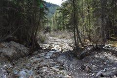 Wasser-Spur Lizenzfreies Stockbild