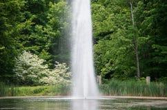 Wasser-Tülle in einem Teich Lizenzfreie Stockfotos
