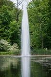 Wasser-Tülle in einem Teich Stockbild