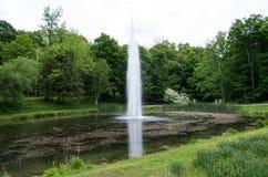 Wasser-Tülle in einem Teich Stockfotografie