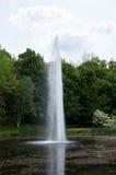 Wasser-Tülle in einem Teich Stockbilder