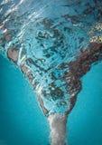 Wasser-Tornado-blaues Wasser-Hintergrund stockfotografie