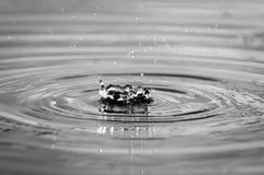 Wasser-Tröpfchen, die in einen Teich bei Sonnenuntergang fallen Stockfoto