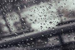 Wasser-Tropfen auf Glas lizenzfreie stockfotos