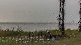 Wasser-Tropfen auf Glas stock video footage