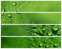 Wasser-Tropfen-Fahnen Stockfotografie