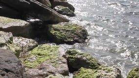 Wasser und Felsen stock video footage