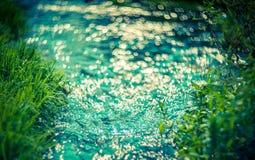 Wasser und Gras bokeh Stockfotos