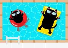 Wasser und Regenschirme Schwarze Katze, die auf gelbe Poolfloss-Wassermatratze und roten Kreis schwimmt Spitzenluftansicht sonnen Stockfotos
