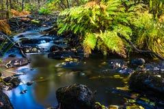 Wasser und Stein Lizenzfreies Stockfoto
