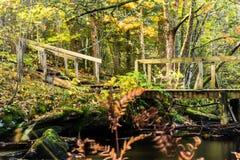 Wasser und Steinbrücke Lizenzfreie Stockfotografie