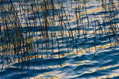 Wasser und Tageslicht stockfotos