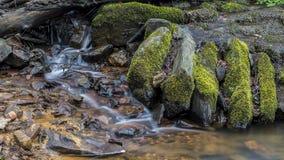 Wasser von einem kleinen Strom Stockbild