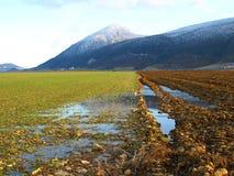 Wasser von zwei Ländern Lizenzfreies Stockbild