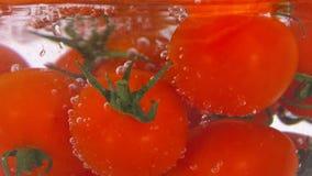 Wasser wird in eine Schüssel mit Tomaten gegossen stock video footage