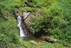 Wasserbach im Wald in Thailand Lizenzfreies Stockfoto