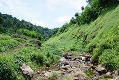 Wasserbach im Wald in Thailand Stockfotos
