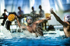 Wasserballspieler stockbilder
