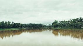 Wasserbaum und -himmel Stockfotos