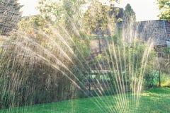 Wasserberieselungsanlage im Garten produziert helle Reflexionen während des Sonnenuntergangs Stockfotografie