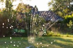 Wasserberieselungsanlage im Garten produziert helle Reflexionen während des Sonnenuntergangs Lizenzfreies Stockbild