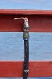 Wasserbratenfett Stockfoto