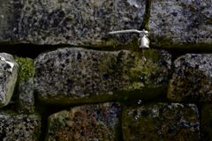 Wasserbratenfett von einem Hahn Stockbild
