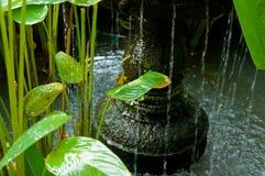 Wasserbrunnen Stockbild