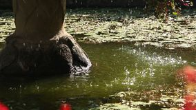 Wasserbrunnen-Wasserbratenfett stock footage