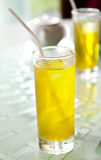 Wasserchrysantheme Lizenzfreie Stockfotografie
