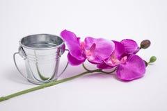 Wassereimer und ein Blumenstrauß lizenzfreie abbildung