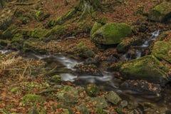 Wasserfälle auf Fluss Cista in Krkonose-Bergen stockbild