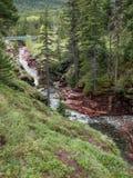 Wasserfälle auf klarem Fluss Stockbilder