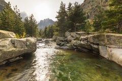 Wasserfälle in den Bergen von Restonica-Tal in Korsika Stockfotos