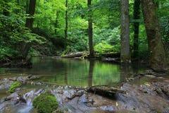 Wasserfälle in den Karpatenbergen Lizenzfreies Stockfoto
