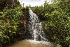 Wasserfälle in der Natur lizenzfreies stockbild